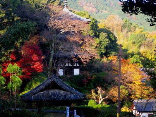 f:id:yamanouta:20101205080407j:image