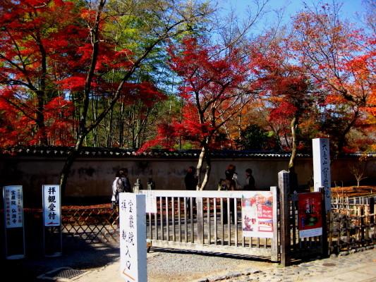 f:id:yamanouta:20101205121636j:image