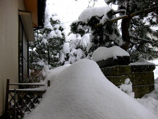 f:id:yamanouta:20110130113846j:image