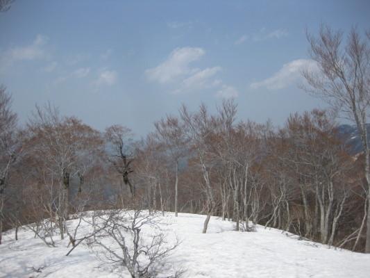 f:id:yamanouta:20110508131357j:image