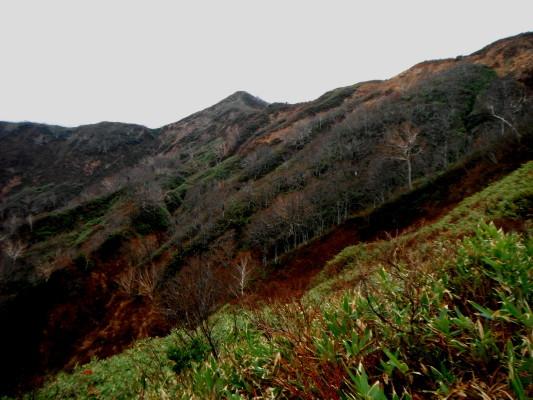 f:id:yamanouta:20111030210208j:image