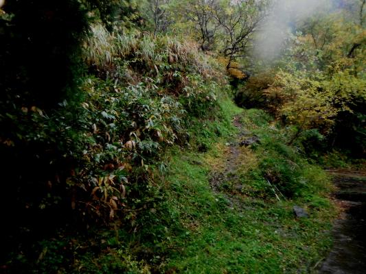f:id:yamanouta:20111120215147j:image
