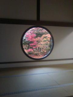 f:id:yamanouta:20111203133024j:image