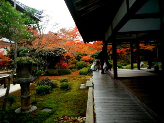 f:id:yamanouta:20111203210936j:image