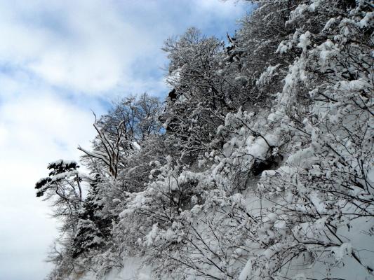 f:id:yamanouta:20120108172237j:image