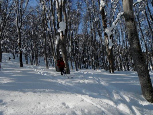 f:id:yamanouta:20120109175832j:image