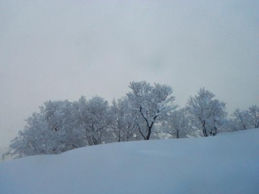f:id:yamanouta:20120212173421j:image