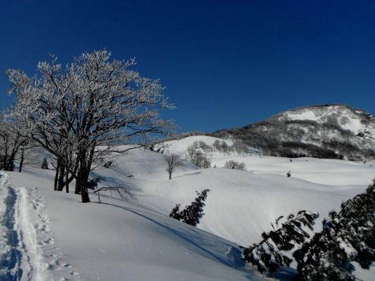 f:id:yamanouta:20120311161147j:image