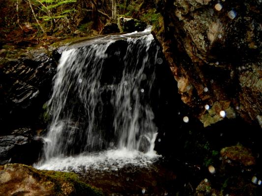 f:id:yamanouta:20120504170401j:image
