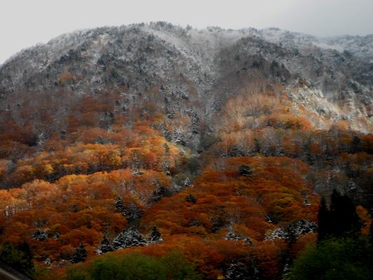 f:id:yamanouta:20121105204733j:image