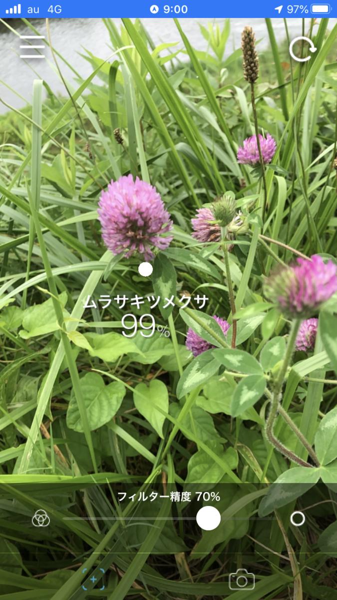 f:id:yamanouta:20200730145809p:plain