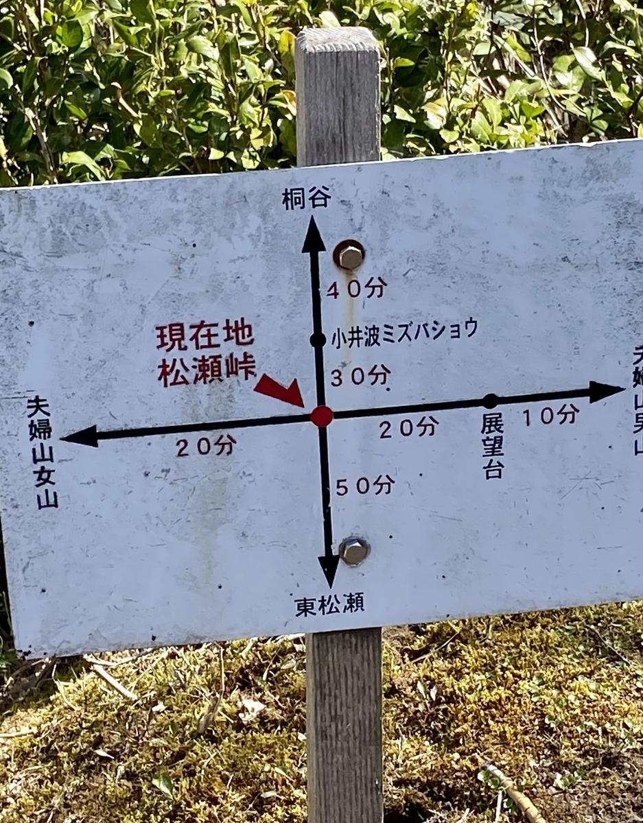 f:id:yamanouta:20210411200452j:plain