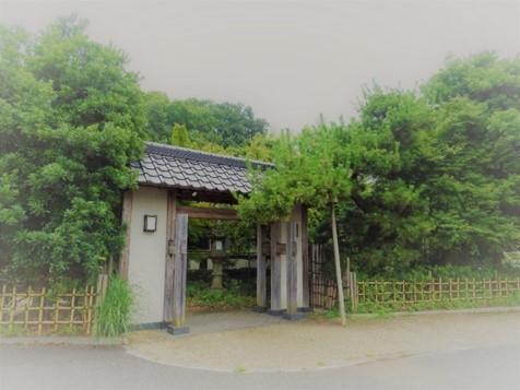 f:id:yamanoyu215:20200922151943j:plain