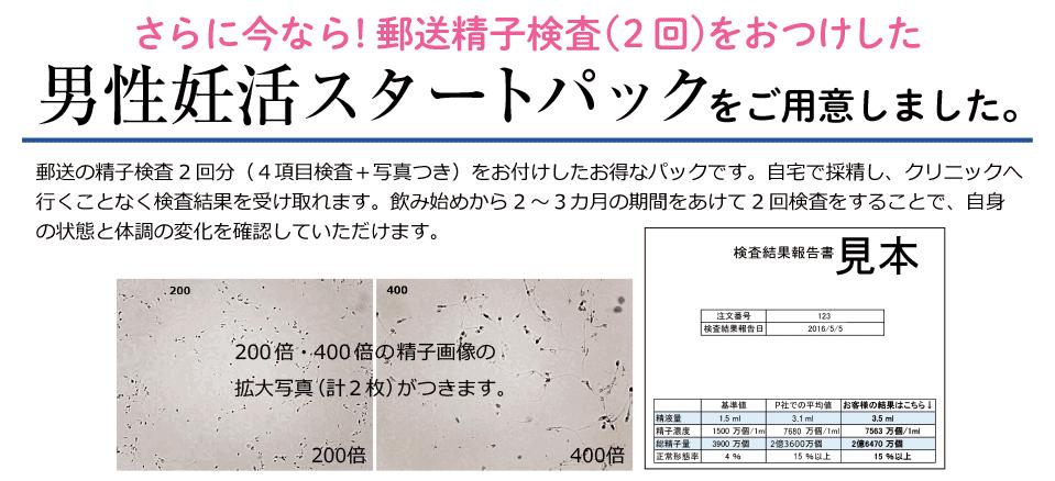 f:id:yamapi33:20170325205620p:plain