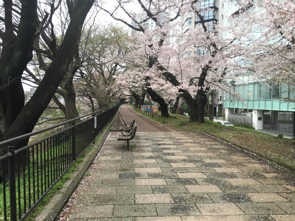 f:id:yamasaaki:20160405234838j:plain