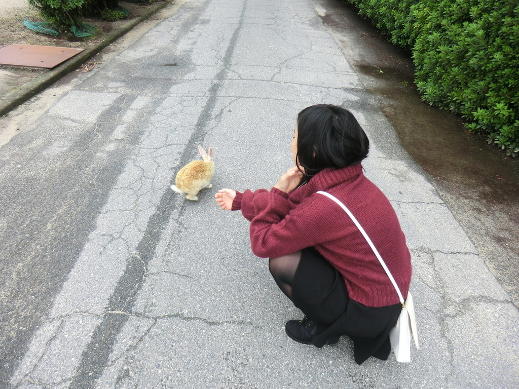 f:id:yamasaki1ma:20190206181910j:plain