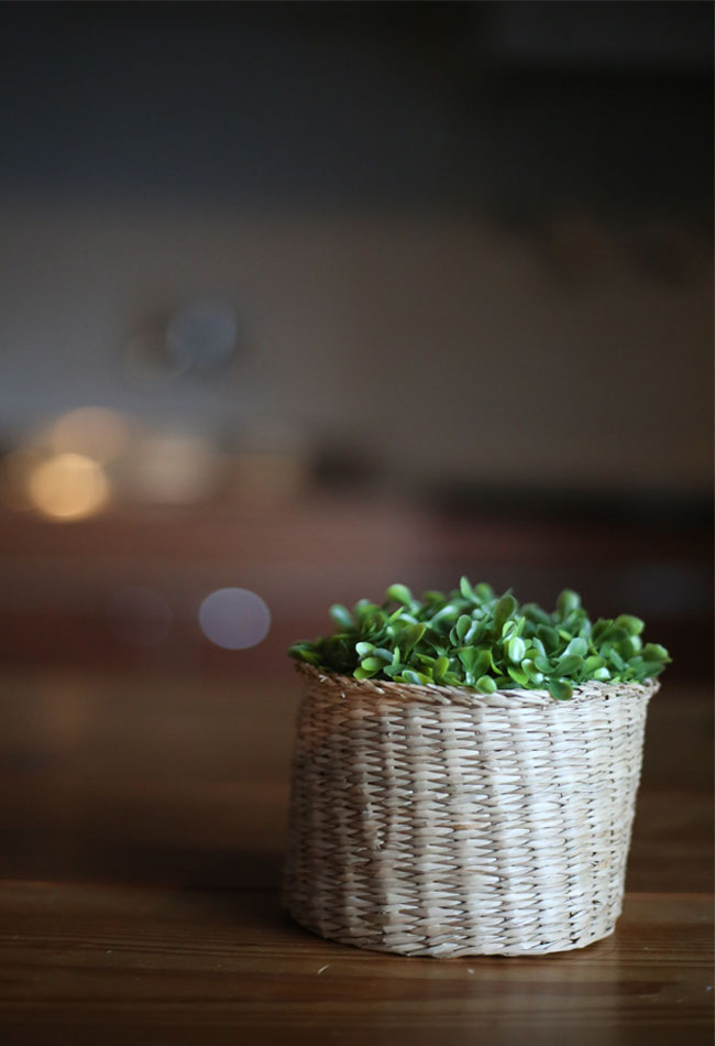 100円ショップの造花で作るフラワーポットの作り方②