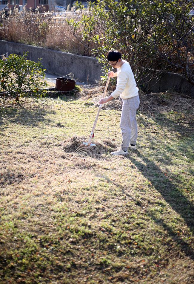庭の草、刈り取り後の掃除