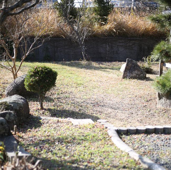庭の雑草、刈り取り前