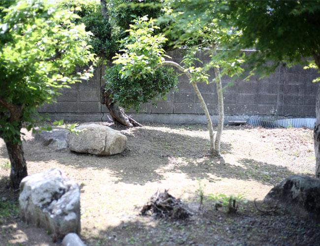 古民家の庭