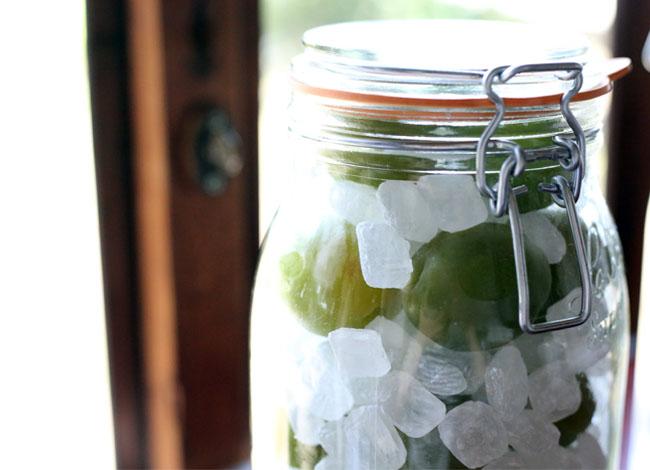 梅シロップ作り 氷砂糖と梅を瓶詰め