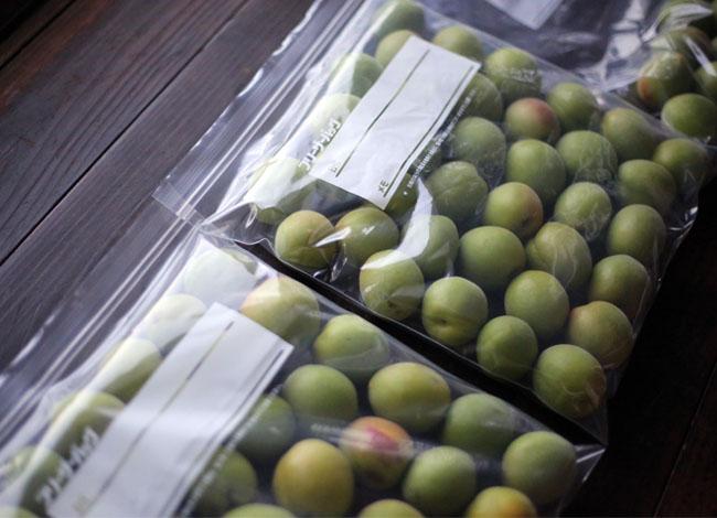 梅シロップ作り 梅の冷凍