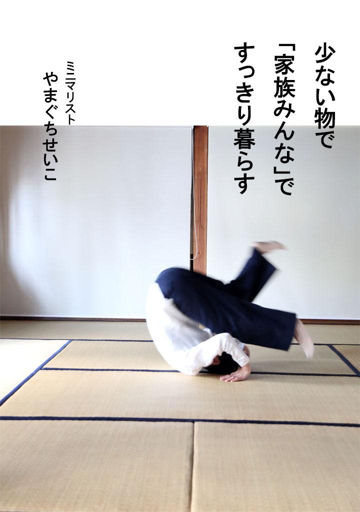 f:id:yamasan0521:20190125214402j:plain