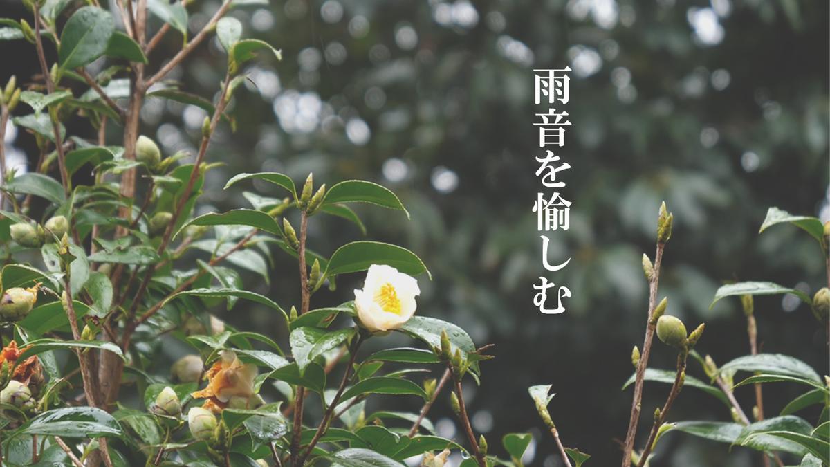 f:id:yamasan0521:20200212175734p:plain