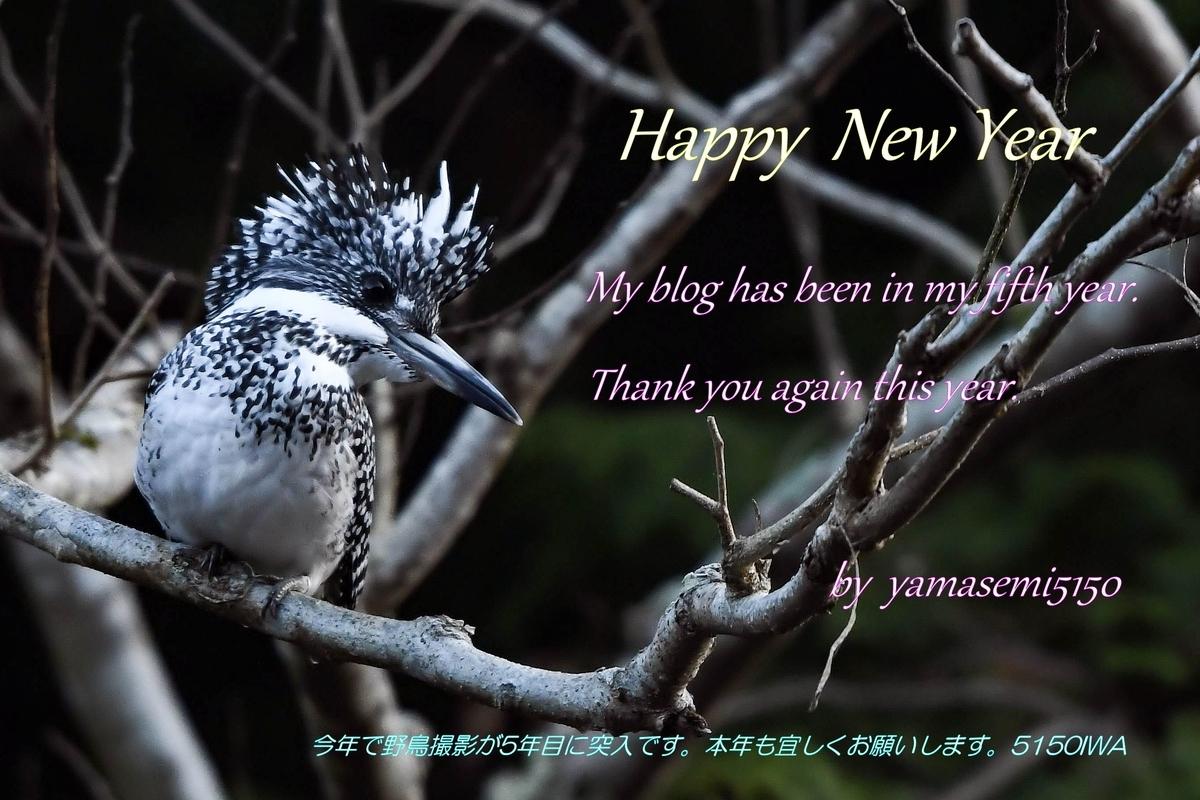 f:id:yamasemi5150:20200101171346j:plain