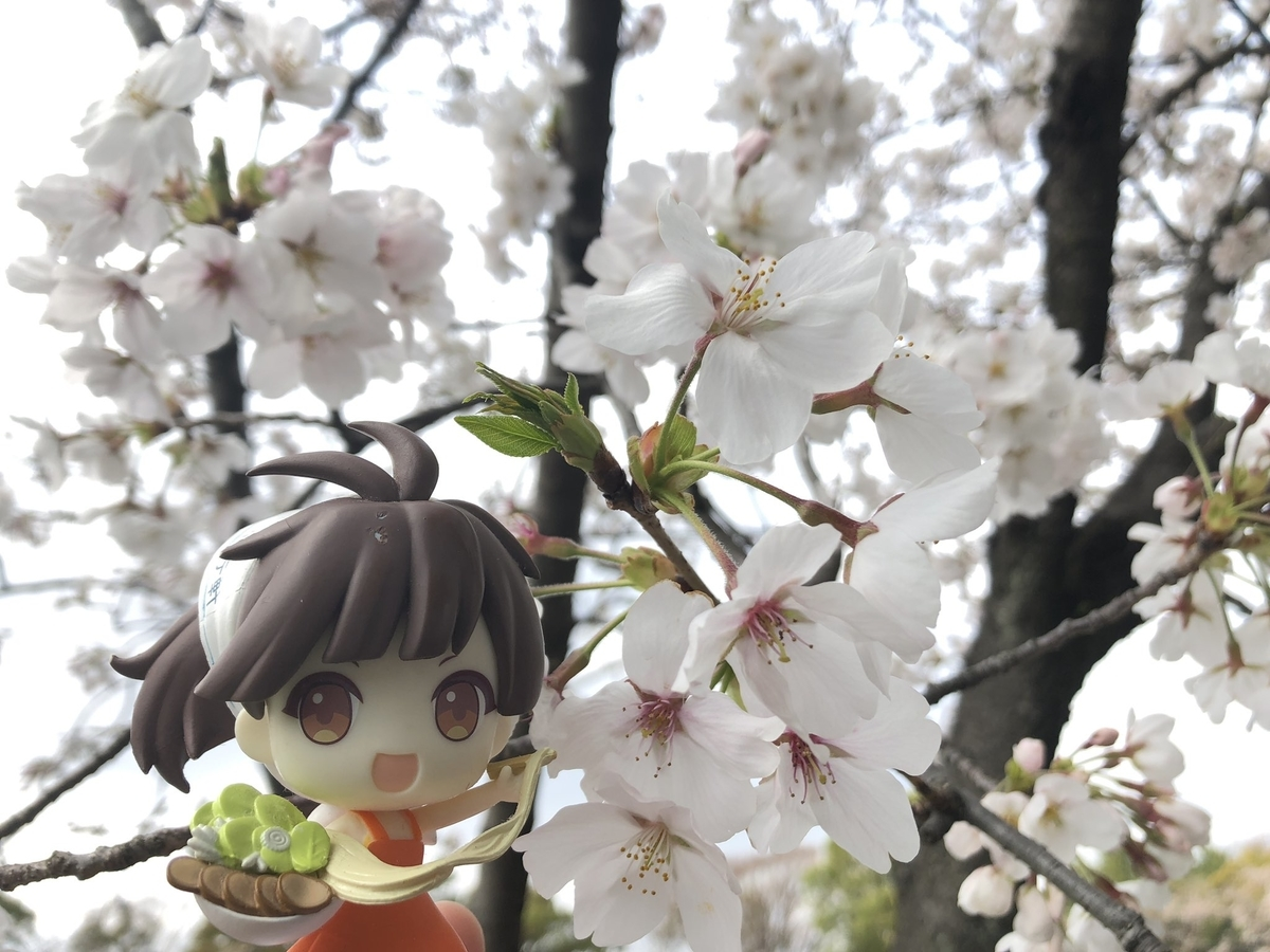 f:id:yamashina_4810:20210331204554j:plain