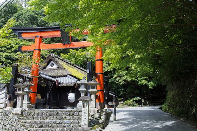 f:id:yamashita_m:20201201155058j:plain