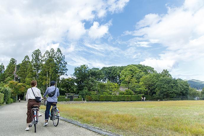 f:id:yamashita_m:20201201155156j:plain