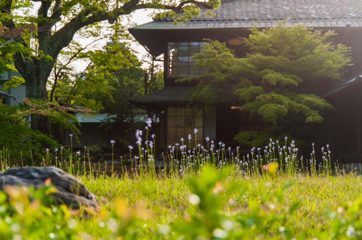 f:id:yamashita_m:20210316110527j:plain