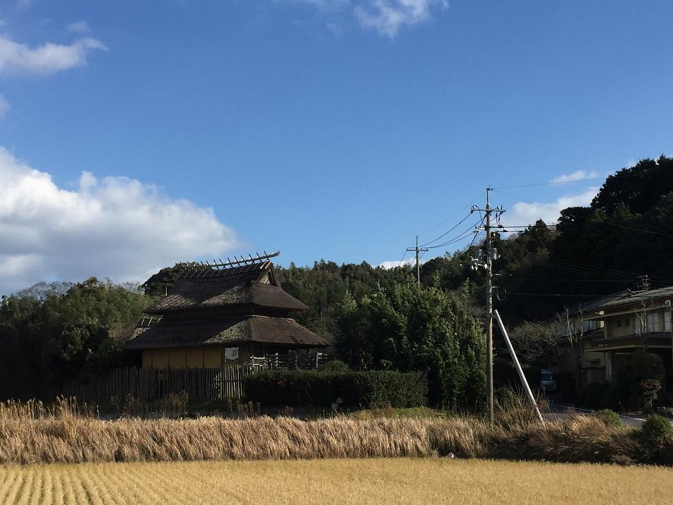 f:id:yamashitagolden:20170102162452p:plain