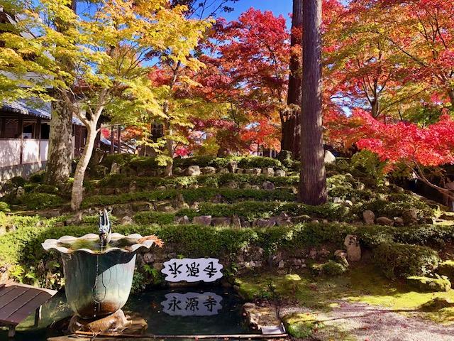 永源寺の池
