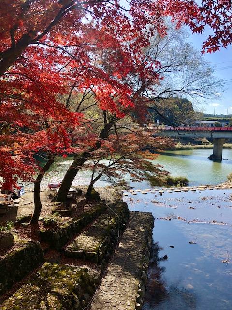 愛知川からの景色