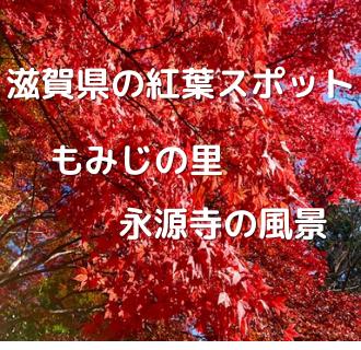 永源寺アイキャッチ