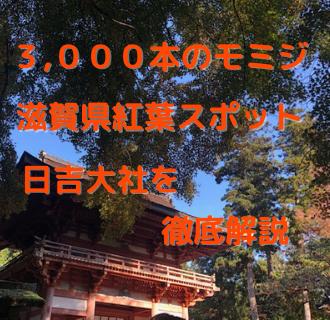 日吉大社アイキャッチ
