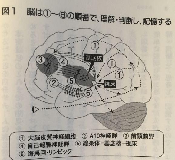 f:id:yamatatsu-kun:20171025123333j:plain