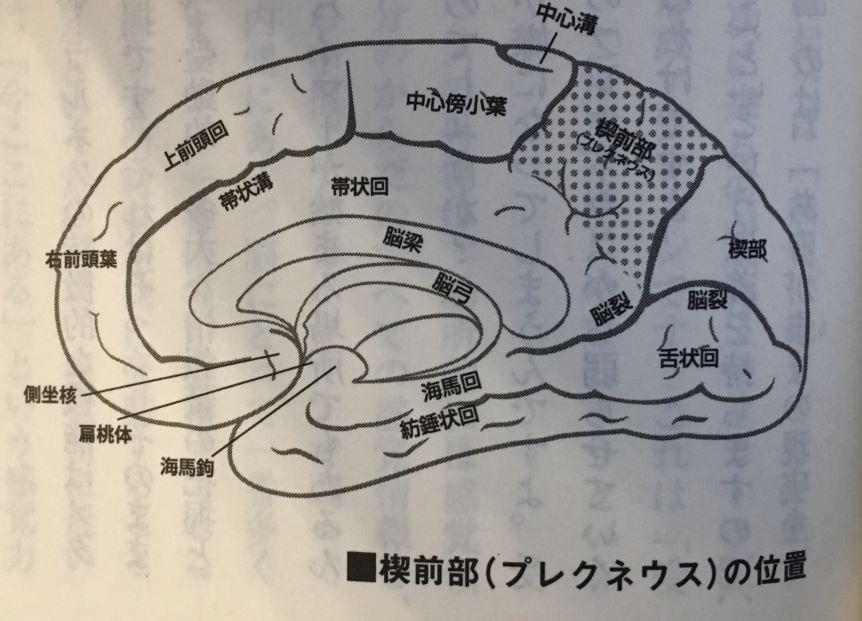 f:id:yamatatsu-kun:20171216102703j:plain