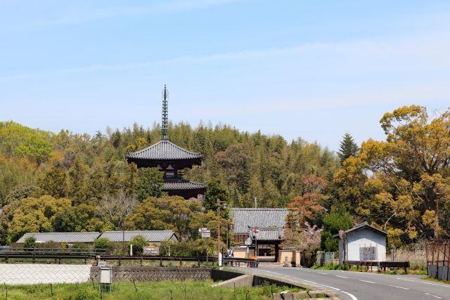 f:id:yamatkohriyaman:20200503231736j:plain