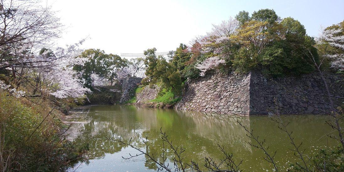 f:id:yamatkohriyaman:20210329223551j:plain
