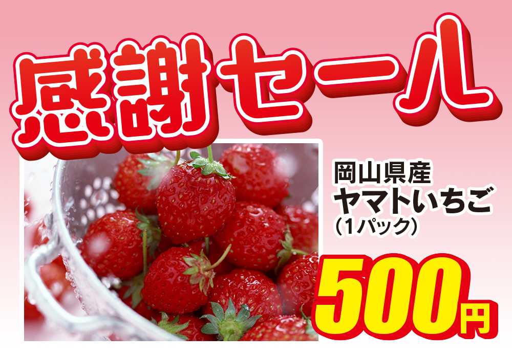 f:id:yamato-fujita:20180208105616j:plain