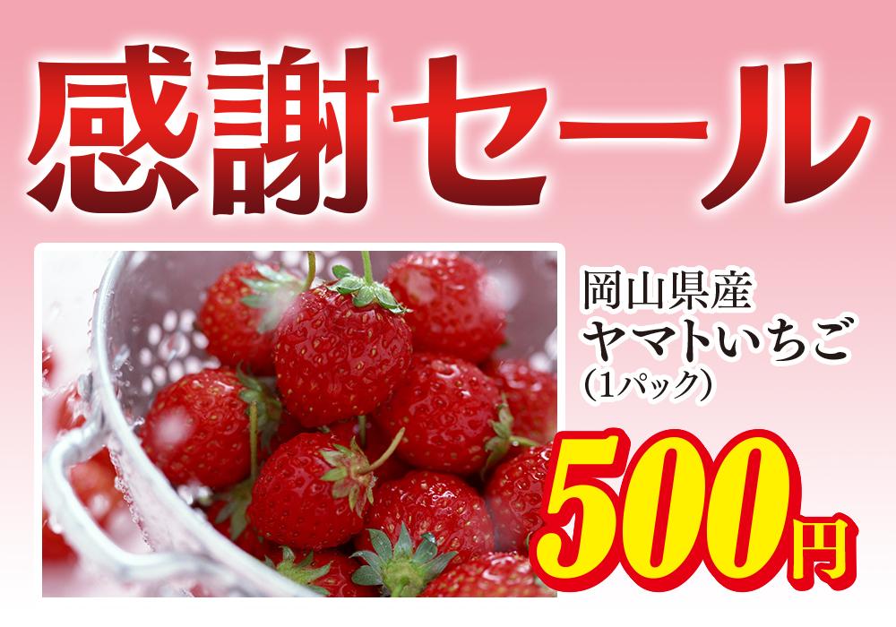f:id:yamato-fujita:20180208110754j:plain