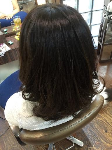 f:id:yamato-hasegawa:20160806182833j:image