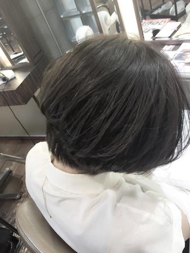 f:id:yamato-hasegawa:20160818202823j:image