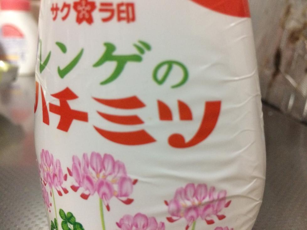 f:id:yamato-mitsumoto:20161028172240j:plain