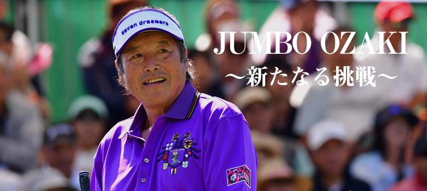 f:id:yamato-mitsumoto:20170201191402j:plain