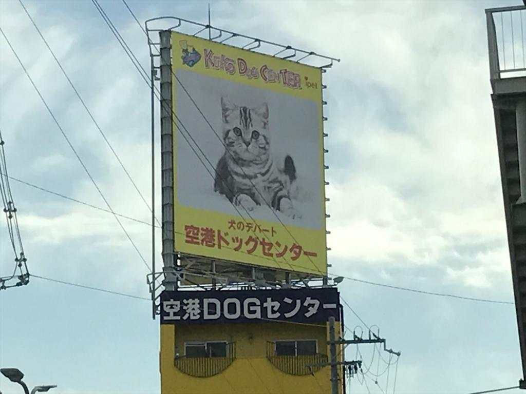 f:id:yamato-mitsumoto:20180116000001j:plain