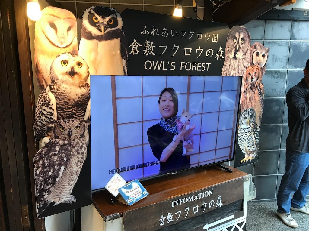 f:id:yamato-mitsumoto:20180610220321j:image